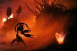 Flammenschlachten... Star Wars (6)